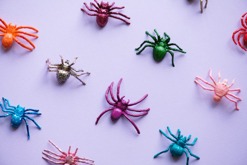 Teal Pumpkin treats: plastic spiders